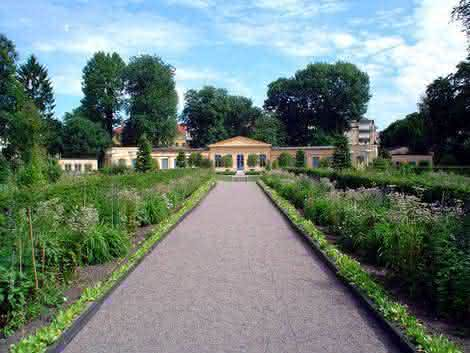 CarlvonLinne Garden O que é um jardim botânico?