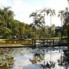 jardim_botanico1