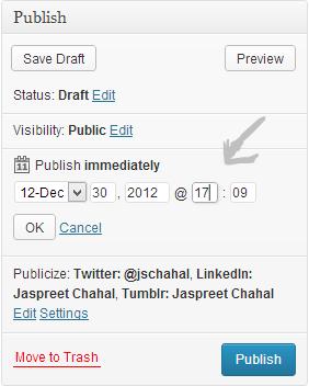 Schedule options wordpress