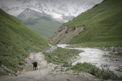 okolice Ushguli