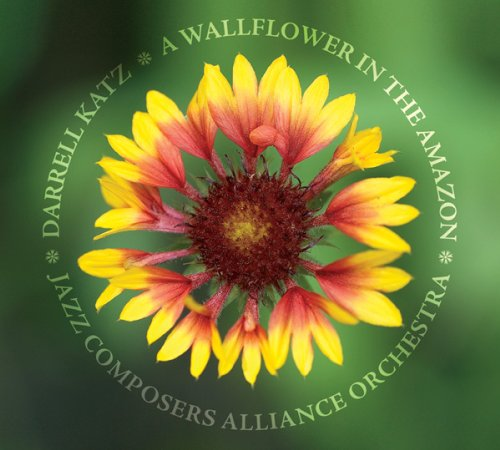 a-wallflower-in-the-amazon-darrell-katz