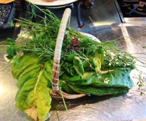 Garden Vegetables for Salad
