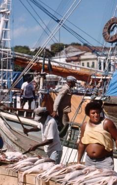 Man Selling Fish, Manaus