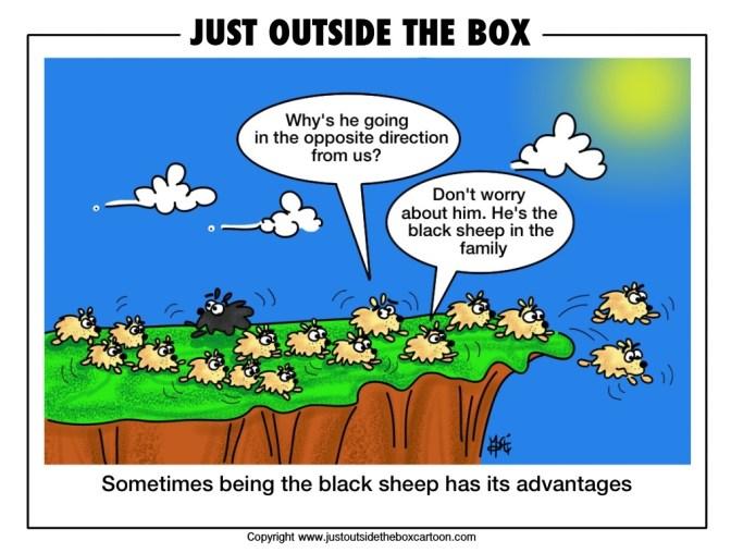 black-sheep-lemming-outside-the-box