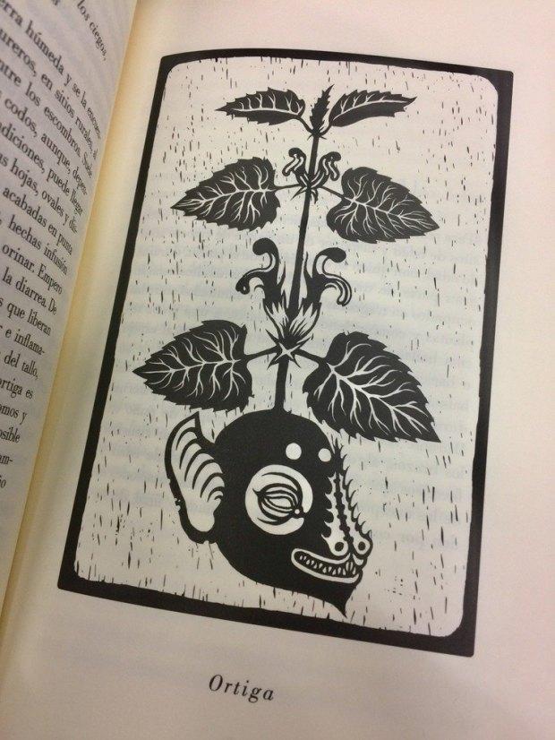 ilustración de Claudio Romo para La coronación de las plantas