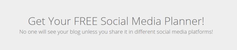 social media planner lead