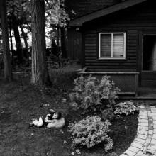 ontario-family-photographer-012