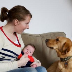 natural newborn photography by jenni browne 16