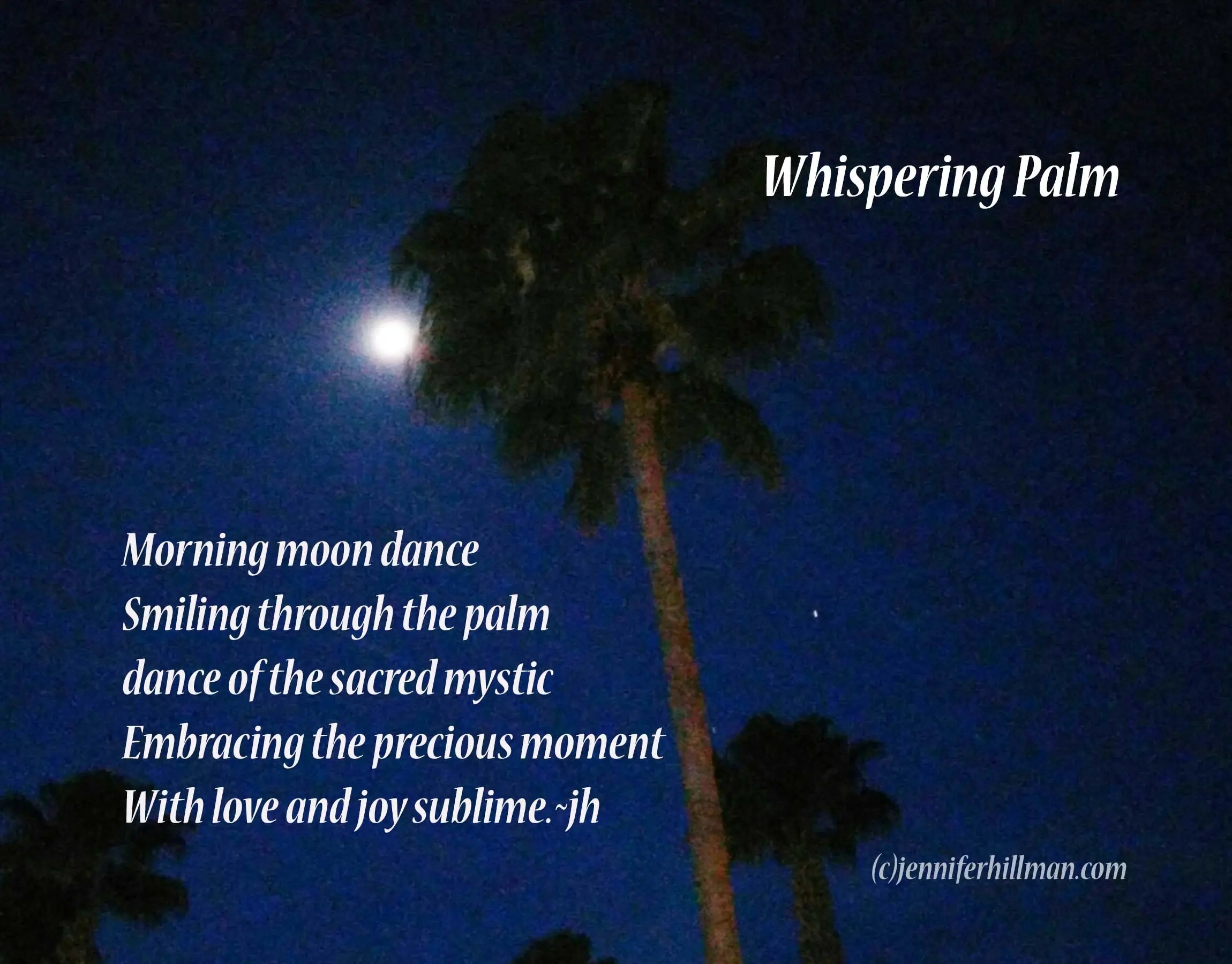 Whispering Palm