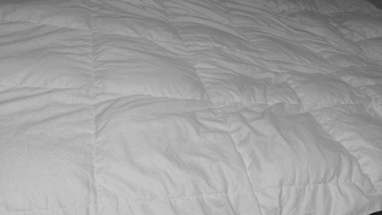 WP_20130219_034  Level 3 Damask Medium Weight White Goose Down Comforter Review WP 20130219 034