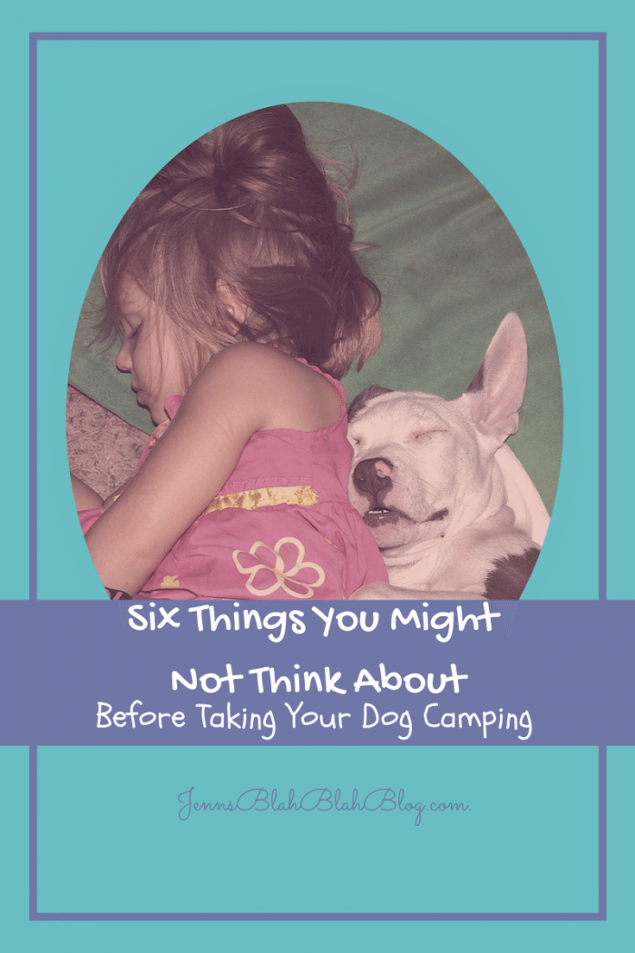 six things you might not think about before taking your dog camping Six Things You Might Not Think About Before Taking Your Dog Camping
