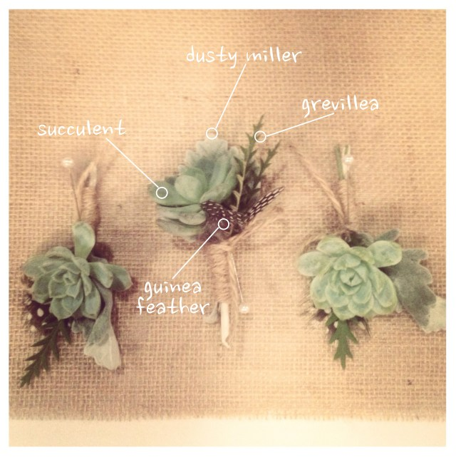 Succulent & Guinea Feather Boutonniere || by Jen's Blossoms