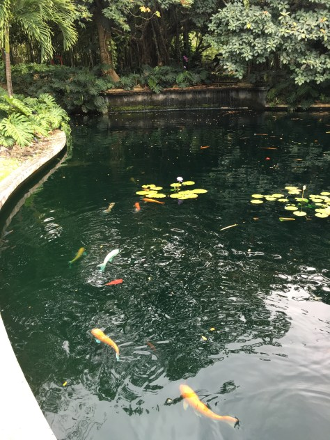 Museum of art puerto rico jen there done that for Koi pond music