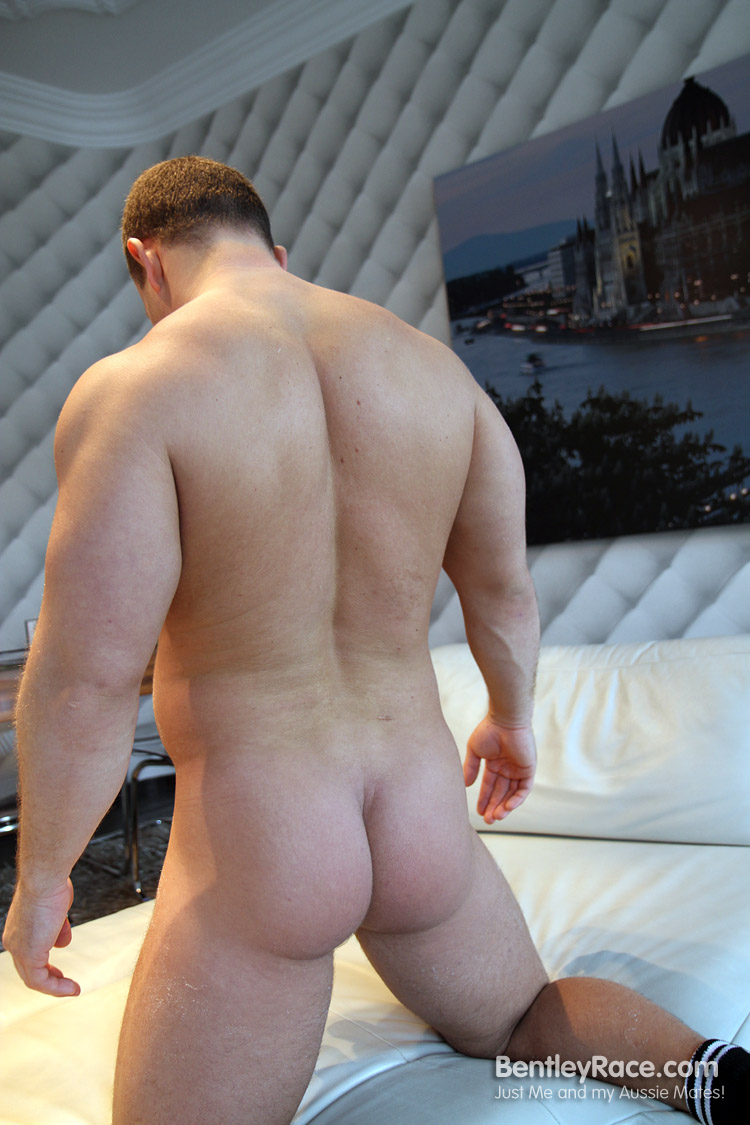 beefy hairy muscle cubs