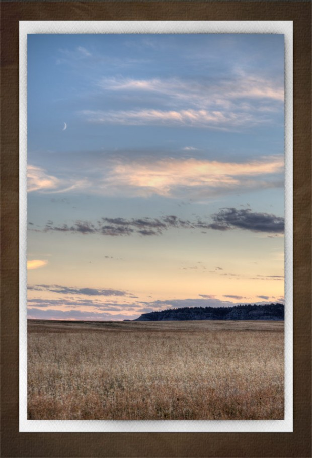 Crescent Moon Over Wheat Field