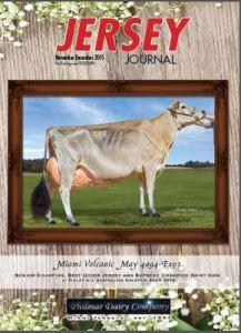 November Jersey Journal