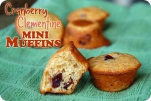SRC: Cranberry Clementine Mini Muffins