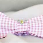 Pink bowtie with canary diamond wedding ring, navy and pink southern wedding | Ivan & Louise Images and Jessica Dum Wedding Coordination