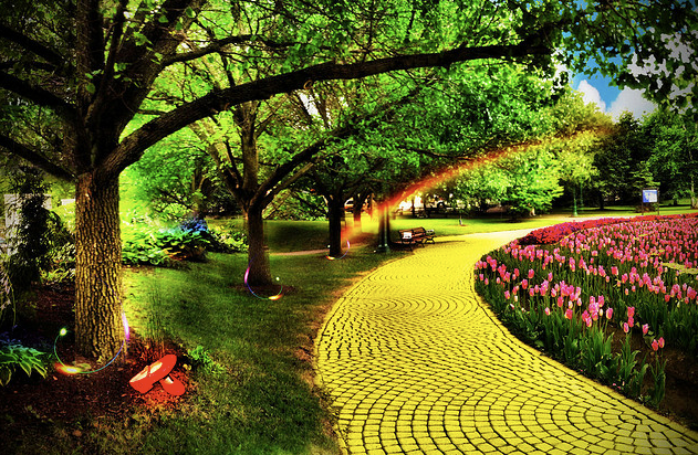 Yellow Brick Road by Kelly Ann T