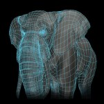 elephant_Wip2