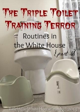 toilet training[3]