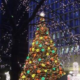 Chicago: Daley Plaza Christmas Tree (2006)