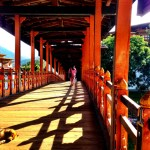Beautiful bridge leading to Punakha Dzong