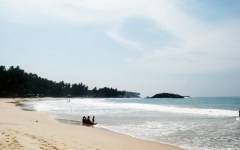 Mirissa in southern Sri Lanka is a fishing port and one of the island's main whale and dolphin watching locations.