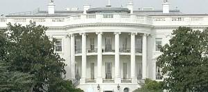 white-house 566