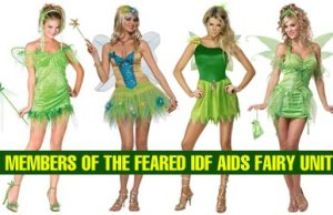 IDF AIDS Fairy Unit