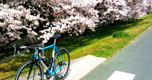 景色満喫!多摩川サイクリングロード