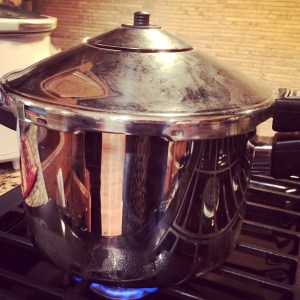 vegan pressure cooking | JL Fields