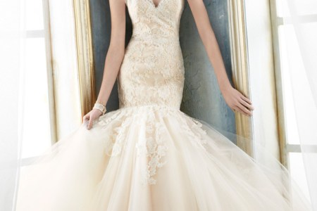 jim hjelm bridal za tulle y skimming silhouette strapless alencon lace ice chapel train 8214 zm