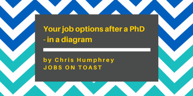 Your job options after a PhD - in a diagram