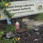 Hawaii Energy Lab - bottle storage!