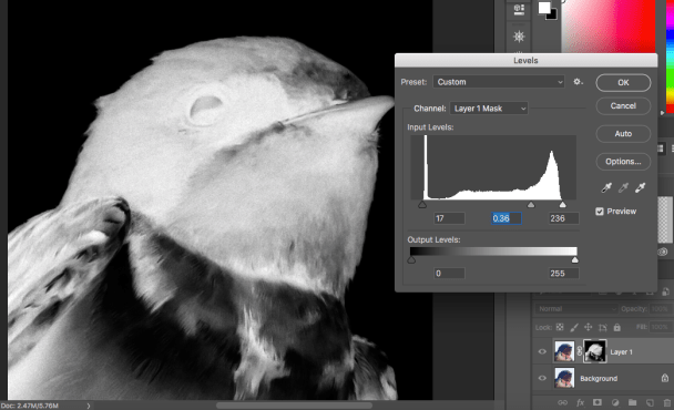Refining the levels of the mask.