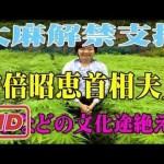 【大麻】安倍昭恵首相夫人「神事などの文化途絶える」と大麻解禁支持 #アイドル #idol #followme