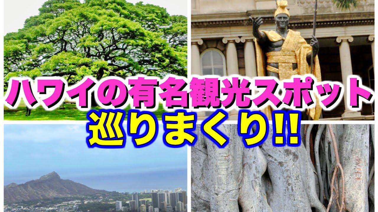 【ハワイ旅行2015#2】モンキーポッドにカメハメハ大王像、タンタラスの丘…ハワイの観光スポットを巡りまくる!! #トラベル #旅行 #followme