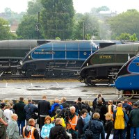 Mallard, Bittern, Sir Nigel Gresley and Union of South Africa A4 locomotives together in York