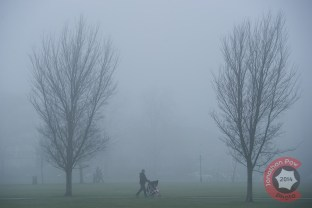 Harrogate stray on a foggy morning in North Yorkshire