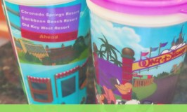 Disney Removes Handles from Resort Refillable Mugs!