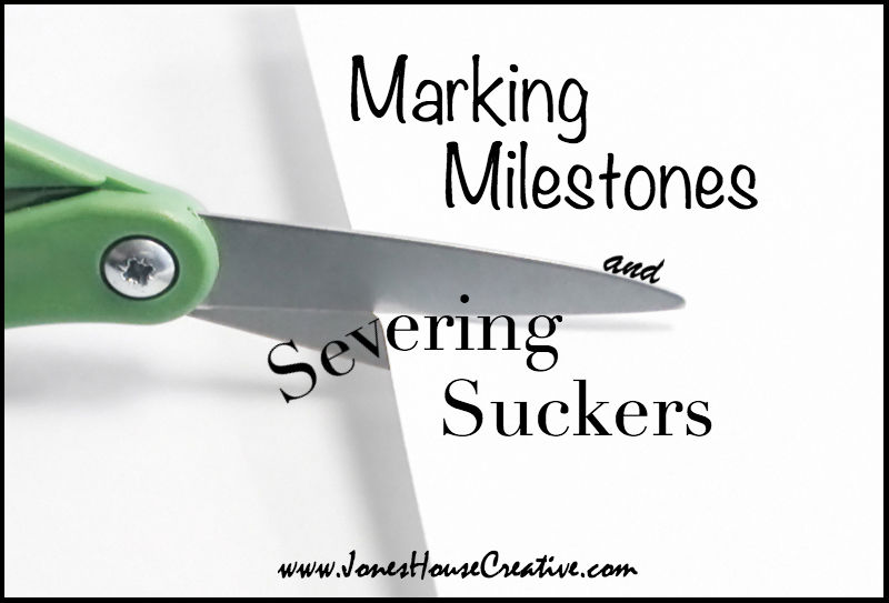Marking Milestones and Severing Suckers from Jones House Creative