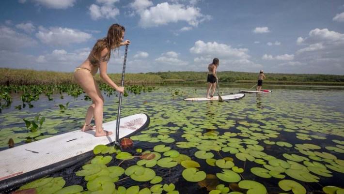 Sup nas águas do Pantanal Marimbus Foto Bruno Graciano
