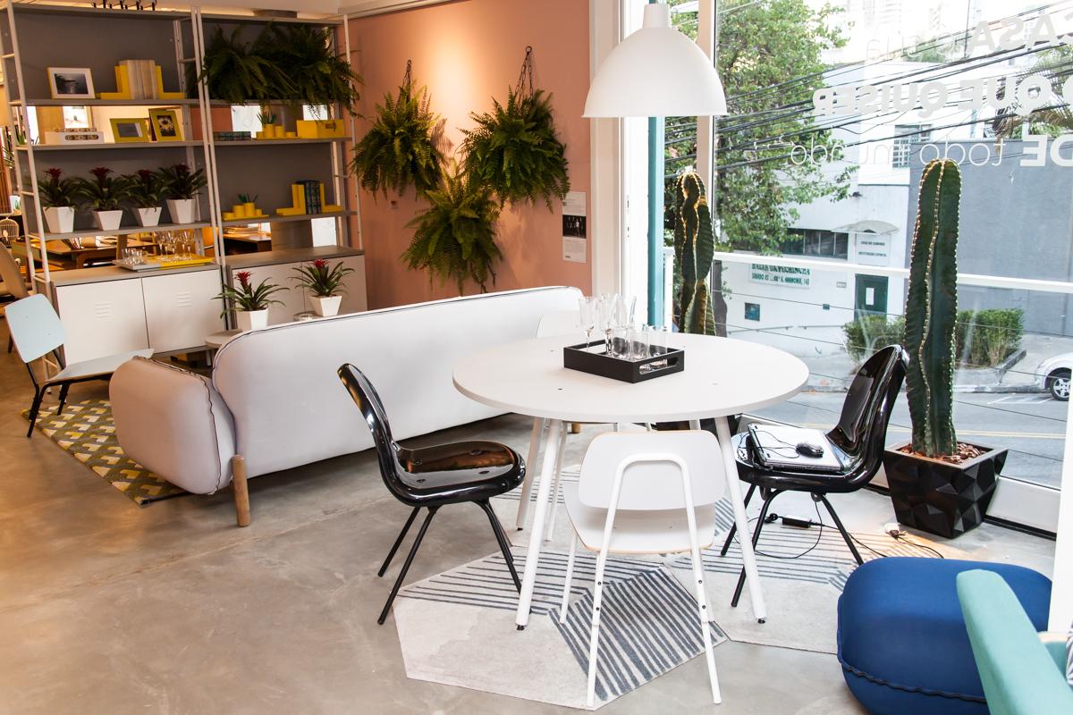 Eis que chega aquele momento que você tem certeza de que precisa de uma samambaia na sua casa! Foto: Divulgação.