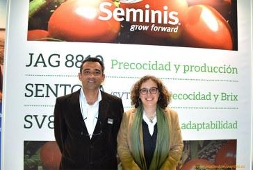 Seminis introduce nuevas variedades tempranas en el tomate de industria