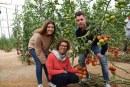 Nuevos agricultores. Los tomates de la familia Ramos Giménez