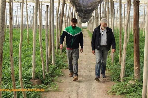El Portagrano o vademécum de semillas hortícolas. Versión XVI