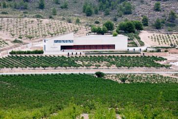 El enoturismo de moda desde Alicante hasta el Bierzo