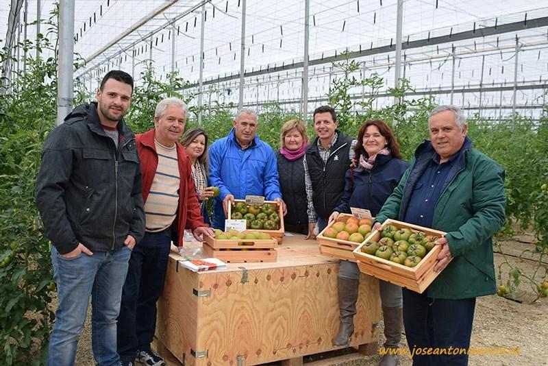 Agricultores de la CASI en las jornadas de tomate de RZ.