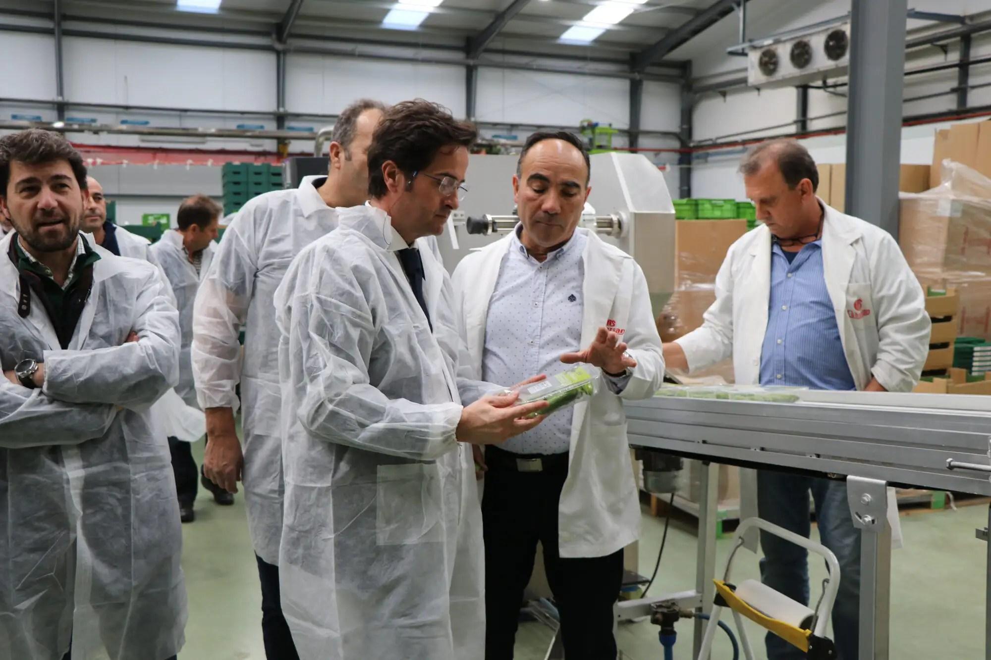 El alcalde de El Ejido recorre las nuevas instalaciones de la cooperativa Cohorsan en San Agustín. Cooperativa miembro de Unica Group.
